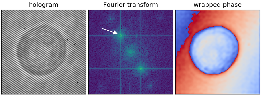 Fourier transform reference